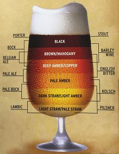 Beer Style Guide | Budweiser Amarillo