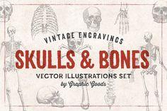 11 Skulls & Bones Illustration Set - Illustrations