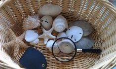 Our Nature Observation Basket.  Put in a magnifying glass and fill with some sort of themed nature items (this one is shells, we also did one with soil, seeds, roots, leaves, and flowers to learn about the life cycle of plants).