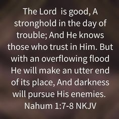 Nahum 1:7-8 True Vine, The Lord Is Good, Bible Verses, Prince, Inspirational Quotes, Faith, God, Life Coach Quotes, Dios