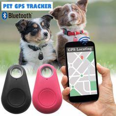 doitonthecheap New Pet Smart Bluetooth Tracker Dog GPS Camera Locator Dog Portable Alarm Tracker Pets, Pet Dogs, Bluetooth, Cat Key, Mini Gps Tracker, Tracker Free, Son Chat, Pet Shop, Gps Tracking