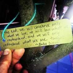 In the end, we will only conserve what we love, we will love what we understand, and we will understand only what we are taught. ~ Baba Dioum