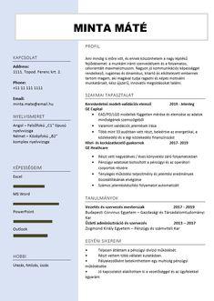 Önéletrajz írás, motivációs levél készítés, CV Writing Service - Alap sablon Cv Writing Service, Writing Services