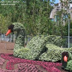 ★ ✯✦⊱ ❤️ ⊰✦✯ ★ Plant Sculpture Topiaries from Botanical Garden in Mosaiculture International~Montreal, Canada ★ ✯✦⊱ ❤️ ⊰✦✯ ★