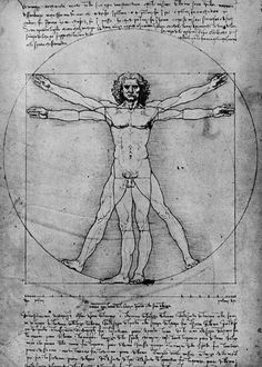 Leonardo da Vinci The proportions of the human figure (The Vitruvian Man) - Handmade Oil Painting Reproduction on Canvas Most Famous Paintings, Famous Art, Vitruvian Man Tattoo, Canvas Online, Call Art, Oil Painting Reproductions, Renaissance Art, Sacred Geometry, Disney Art