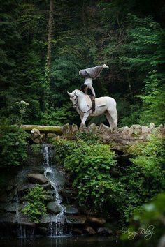 Horse yoga, yoga poses Inspiration