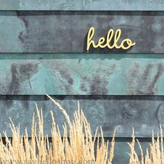 Little hello sign from Say Hello- I want to order a bunch of these to use on every wreath!