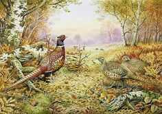Pheasants In Woodland Painting by Carl Donner
