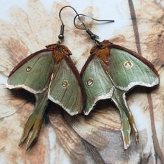 Luna Moth Earrings, made of leather - just gorgeous. I would wear on a necklace though, not earrings.