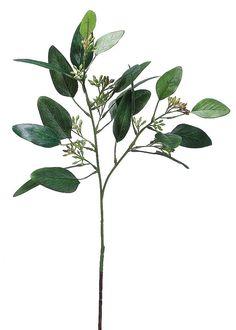 Silk Plants Direct Seeded Eucalyptus Spray - Green Burgundy - Pack of 12 Feuille Eucalyptus, Seeded Eucalyptus, Eucalyptus Wedding, Eucalyptus Leaves, Small Artificial Plants, Artificial Flowers, Fake Flowers, Silk Flowers, Desgin
