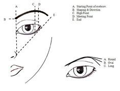 The golden rule of a good brow game is map out your brows in accordance to the shape of your EYES and not your face.
