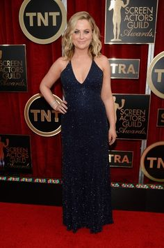 Amy Poehler in Jenny Packham Where: The 2015 SAG Awards (Photo: Kevork Djansezian/Getty Images) See what the other stars wore at the SAG awards... www.flare.com/fashion/the-2015-sag-awards-what-the-stars-wore/