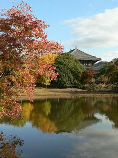 The 10 best places in Japan for autumn leaves | RocketNews24