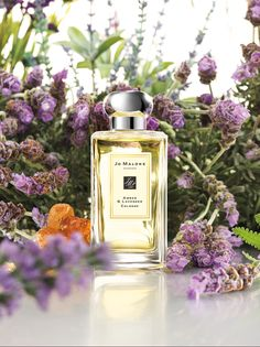 Ahhhh.... We can smell the lovely through the pixels!!!   Jo Malone™ Amber & Lavender Cologne