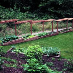 images about Vegetable Gardens and Orchards on