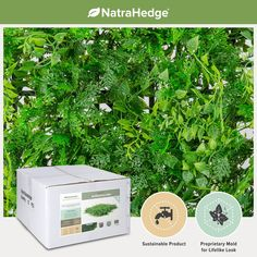 NatraHedge® Artificial Fern 20'x 20' Mat Panels (12 Pack) ... * Want additional info? Click on the image.
