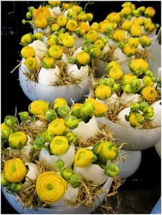 Ken Marten: Yellow ranunculus and straw in egg shells. Easter, The Connaught Hotel, Mayfair, London Deco Floral, Arte Floral, Easter Flowers, Spring Flowers, Diy Ostern, Easter Party, Easter Wreaths, Easter Crafts, Flower Decorations