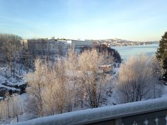 View from the terrace 12/27/14 by Inger Johanne