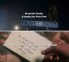 Happy birthday 20th anniversary Harry Potter! June 26