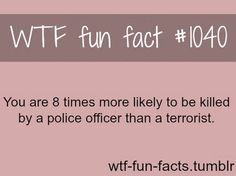 You are 8 times more likely to be killed by police than a terrorist.    Doesn't that make the police terrorists?