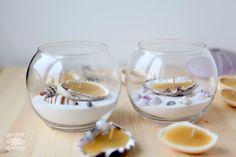 Beeswax Seashell Tea Lights