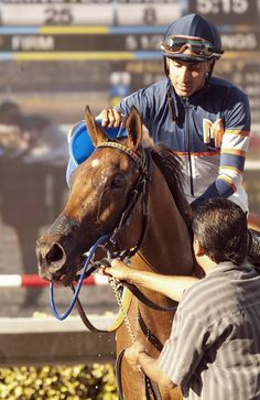 Sunday Rules, with Edwin Maldonado aboard, appears after winning the $150,000 Generous Portion Stakes horse race on Wednesday, Aug. 28, 2013, at Del Mar Thoroughbred Club. Photo courtesy of AP Photo / Benoit Photo