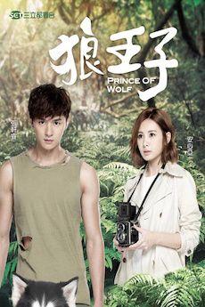 Prince of Wolf Taiwan drama - Google Search