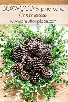 Easy and quick boxwood and pine cone centerpiece that's perfect for your holiday table. Goes together in less than 15 minutes!
