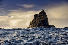 Bridge Rock off Bruny Island - Tasmania - Australia Bruny Island, Wild Forest, Little Island, Tasmania, How Beautiful, Amazing Nature, Bridge, Ocean, Country