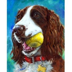 English Springer Spaniel Art Dog Print of Original Painting by Dottie Dracos, Liver Springer with Tennis Ball by DottieDracos on Etsy https://www.etsy.com/listing/37003709/english-springer-spaniel-art-dog-print