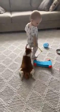 Funny Animal Videos, Funny Animal Pictures, Cute Funny Animals, Cute Baby Animals, Funny Babies, Funny Kids, Cute Babies, Kittens And Puppies, Cats And Kittens