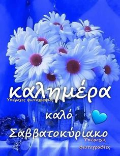 Good Morning, Wallpapers, Buen Dia, Bonjour, Wallpaper, Good Morning Wishes, Backgrounds