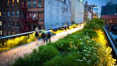 International Garden Photographer of the Year place in Greening the City category, Claire Takacs. The High Line, New York City New York Photos, Photos Du, New York High Line, Park Leisure, Highline Nyc, Cities, Park In New York, Win A Trip, Photography Gallery