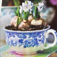 Gift idea, country living mag