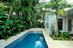 modern architecture - craig reynolds landscape architect - miller residence - exterior view - tropical garden #CustomPool RealPalmTrees.com