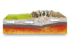 convergent plate boundary and orogeny by Marcin Oleksak