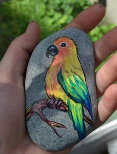 Hand Painted Stone Parrot Sun Conure Birds Nature by TwoBlueRavens