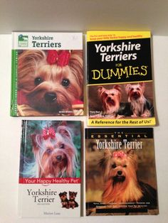 Lot of 4 Yorkshire Terrier Books Yorkie Dog Breed Training Grooming Care Dummies