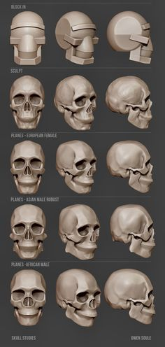 resources tutorial printing graphic digital design zbrush 2019 for and web Web Digital Graphic Design and Printing Resources for Zbrush 2019 Tutorial You can find Zbrush and more on our website Head Anatomy, Anatomy Drawing, Anatomy Art, Gesture Drawing, Human Skull Anatomy, Anatomy Study, Body Anatomy, Skull Reference, Anatomy Reference