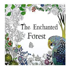 The Enchanted Forest Book Coloring for Adult Kid Painting Antistress Colouring Mandala Secret Garden Quiet Color Drawing 24Page