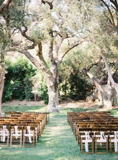 I want an outdoor wedding SO bad. gorgeous.