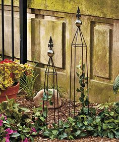 Set of 2 Garden Obelisks will look great with your vining plants climbing the sturdy frames. Clever stainless steel structures will add an attractive vertical element to your garden. Each is topped with a reflective silver gazing ball and a cast iron fin Large Pots, Garden Stakes, Lawn And Garden, Trellis, Curb Appeal, Wind Chimes, Outdoor Gardens, Backdrops, Backyard