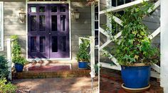 DIY Home Decor :Dress Up Your Front Door with a DIY Tomato Cage Topiary