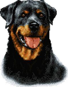 Kayla rotweiller - cross stitch pattern designed by Marv Schier. Category: Dogs.