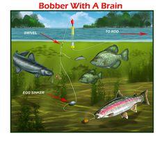 fishing rigs for catfish | BWAB Fisherman: Edward A. Luterio Illustrator www.Fishpainter.net 215 ...