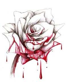 bleeding rose drawing | you can always paint the white roses with blood, I mean…