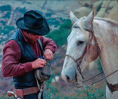 James Drury, Actor James, The Virginian, Most Favorite, Westerns, It Cast, Horses, Actors, Animals