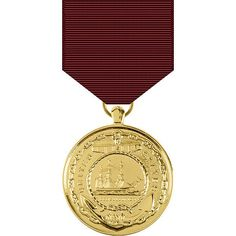 Military Medals And Ribbons, Us Military Medals, Medal Ribbon, Service Medals, Service Awards, United States Navy, Coast Guard, January 1, Gold