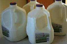 What to do with soured raw milk - don't just throw it away! Recipes for yogurt, kefir, waffles, custard pudding along with suggestions for cream cheese, whey and links!