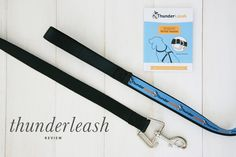 ThunderLeash Review | No Pull Dog Lead Harness | Pretty Fluffy - Really want to get one of these for Dottie!
